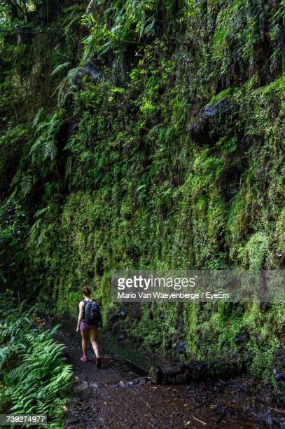 Rear View Of Female Hiker Walking By Moss Covered Rock Formation