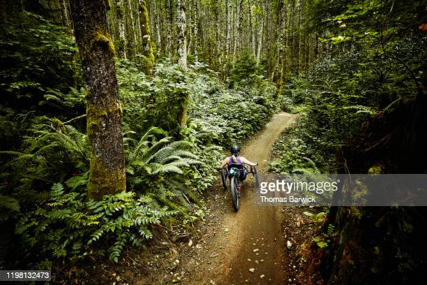 rear view of female wheelchair athlete descending down trail on adaptive mountain bike - forward athlete stock pictures, royalty-free photos & images