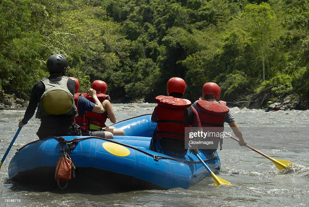 Rear view of five people rafting in a river : Foto de stock