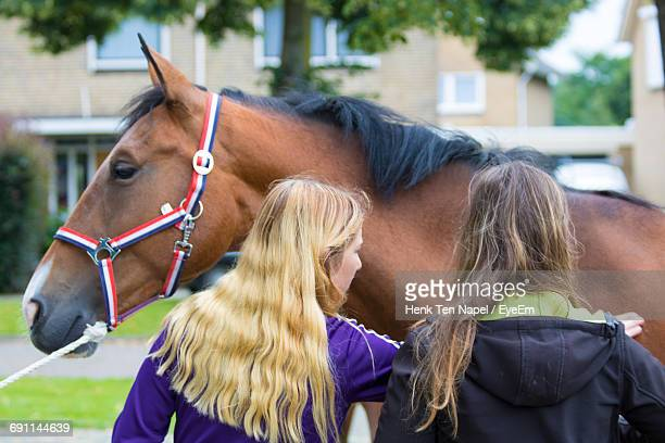 Rear View Of Friends Looking At Horse