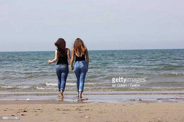 Rear View Of Friends Standing On Beach