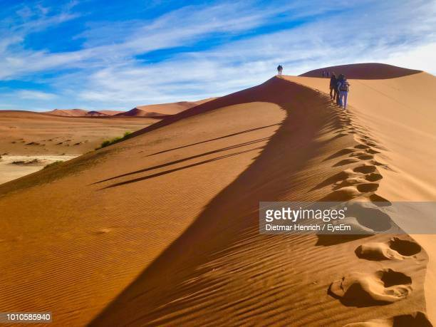 rear view of friends walking on desert against sky - セスリエム ストックフォトと画像