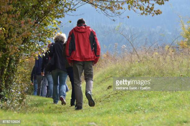 Rear View Of Friends Walking On Grassland