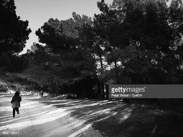 rear view of girl on field by trees during sunny day - boban foto e immagini stock