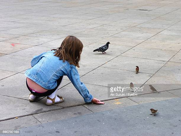 Rear View Of Girl Playing With Birds On Walkway