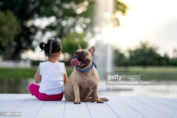 rear view of girl sitting by dog looking away against fountain - animaux domestiques photos et images de collection