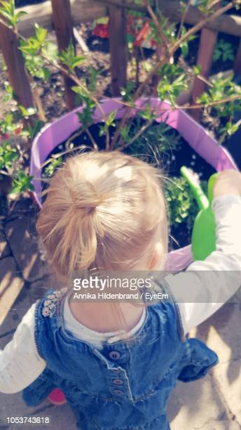 Rear View Of Girl Standing In Garden During Sunny Day