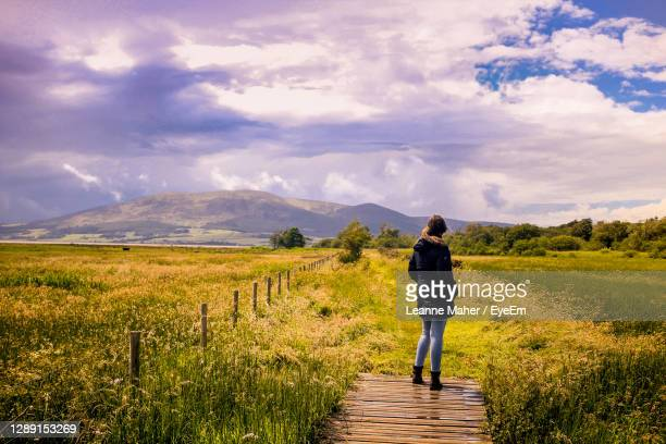 rear view of girl standing on field against sky - dumfries stock pictures, royalty-free photos & images