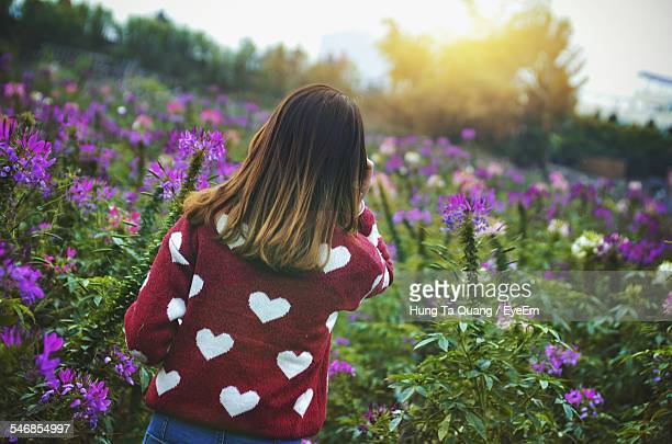 Rear View Of Girl Surrounded By Flowers In Park