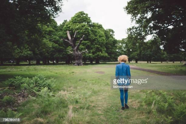 rear view of girl walking on grassy field - bortes cristian stock-fotos und bilder