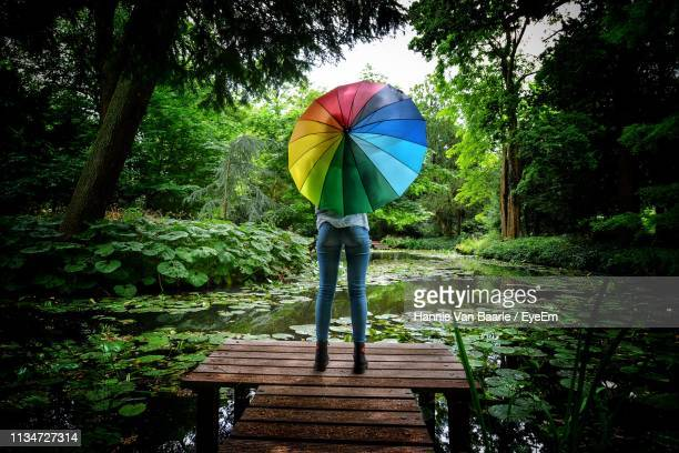 Rear View Of Girl With Colorful Umbrella Standing On Pier By Lake At Forest