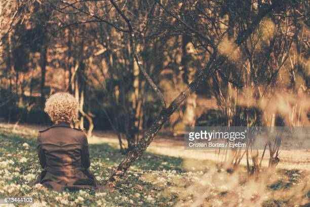 rear view of girl with curly hair sitting in park - bortes foto e immagini stock