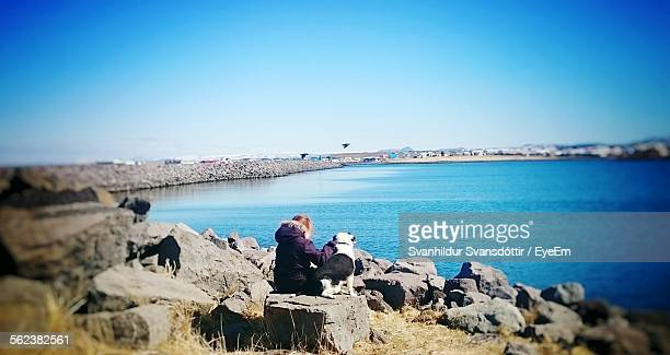 Rear View Of Girl With Dog Sitting On Rock At Shore Against Clear Blue Sky