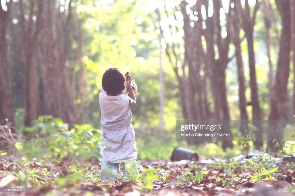 Rear View Of Girl With Puppy At Forest : Photo