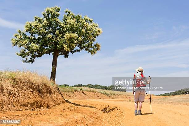 rear view of hiker in hat with backpack walking on dirt road against sky during sunny day - cammino di santiago di compostella foto e immagini stock
