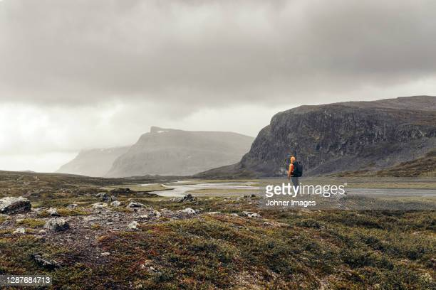 rear view of hiker in mountains - sweden stock pictures, royalty-free photos & images