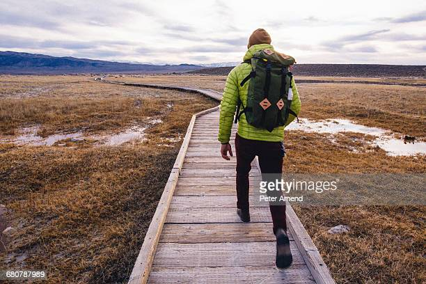 Rear view of hiker on wooden walkway over wetland, Mammoth Lakes, California, USA