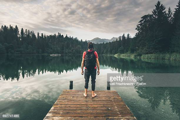 rear view of hiker standing on jetty while looking at lake against trees in forest - jetty stock pictures, royalty-free photos & images