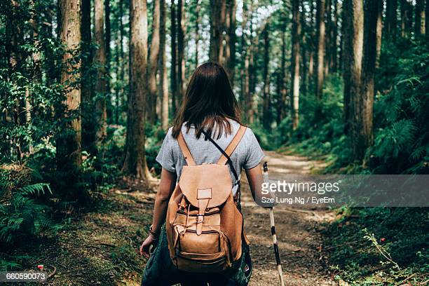 rear view of hiker walking on footpath in forest - woodland stock pictures, royalty-free photos & images