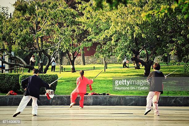 Rear View Of Kids Practicing Kung Fu In Park