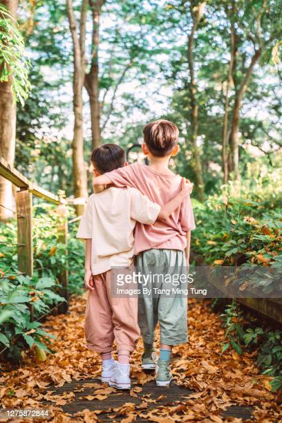 rear view of little brothers walking arm in arm down a wooden path in country side - arm in arm stock pictures, royalty-free photos & images