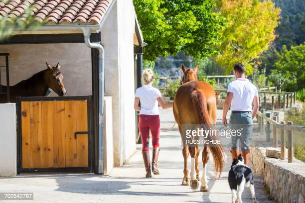 rear view of male and female grooms leading horse in rural stables - riding boot stock pictures, royalty-free photos & images
