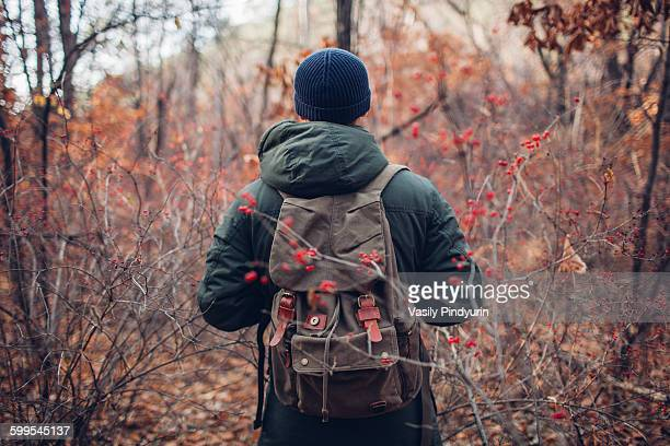 Rear view of male hiker in warm clothing standing at forest
