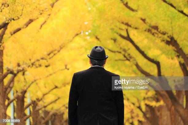 Rear View Of Man Against Trees