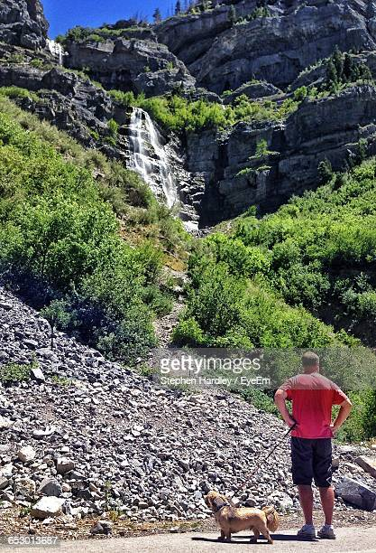 rear view of man and dog standing in front of waterfall - orem utah stock pictures, royalty-free photos & images