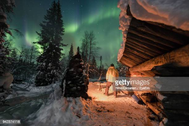 rear view of man by trees on snow against aurora borealis - finlandia fotografías e imágenes de stock