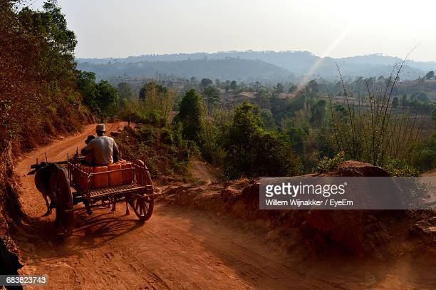 Rear View Of Man Driving Cart Along Dirt Road