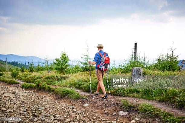 rear view of man hiking in the mountains - pantaloncini grigi foto e immagini stock
