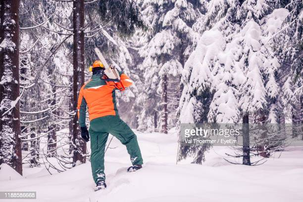 rear view of man holding chainsaw while standing amidst trees in forest during winter - val thoermer stock-fotos und bilder