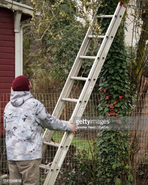 rear view of man holding ladder - jennifer reed stock pictures, royalty-free photos & images