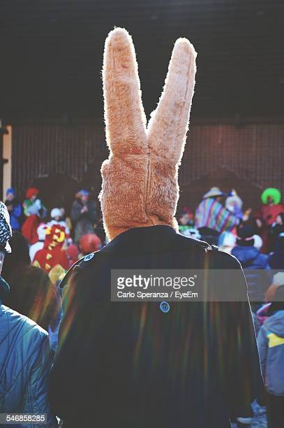 Rear View Of Man In Animal Costume During Carnival