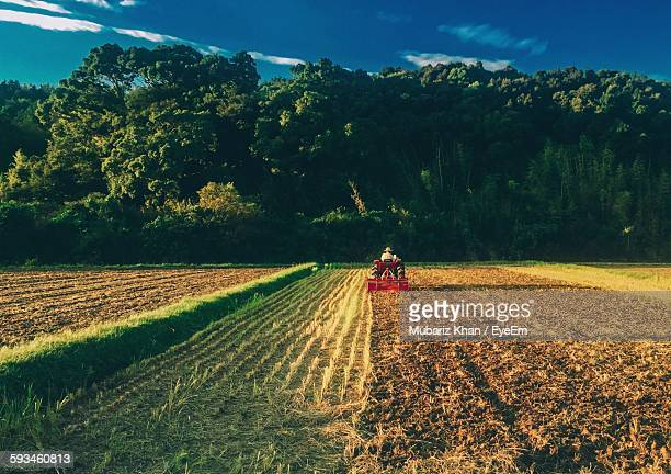 Rear View Of Man In Tractor On Agricultural Field Against Trees