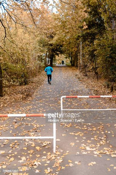rear view of man jogging on walkway amidst trees in park - albrecht schlotter stock photos and pictures