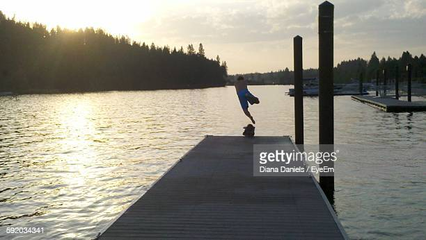 rear view of man jumping in lake from jetty - diana daniels stock-fotos und bilder