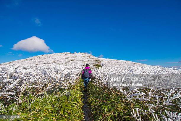 Rear View Of Man On Snowcapped Mountain