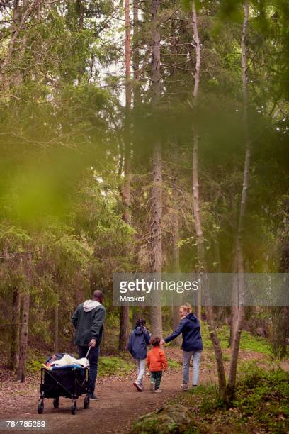 Rear view of man pulling camping cart while hiking with family amidst trees in forest