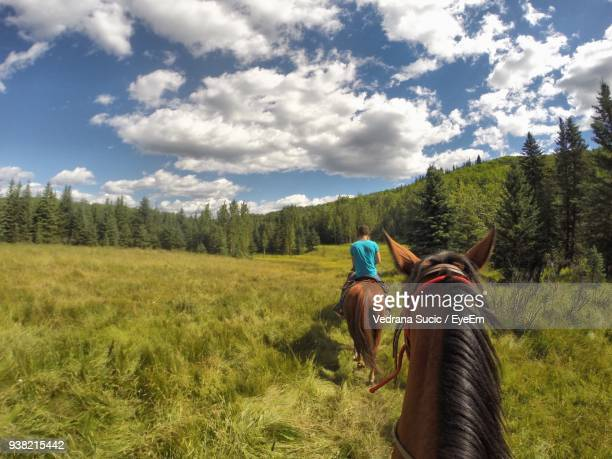 Rear View Of Man Riding Horse On Grassy Field