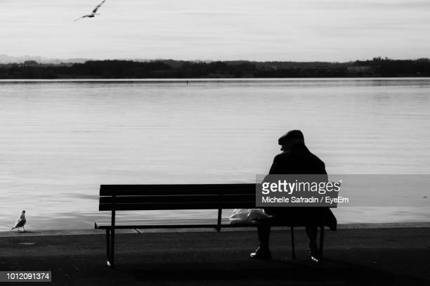 Rear View Of Man Sitting By Lake On Bench