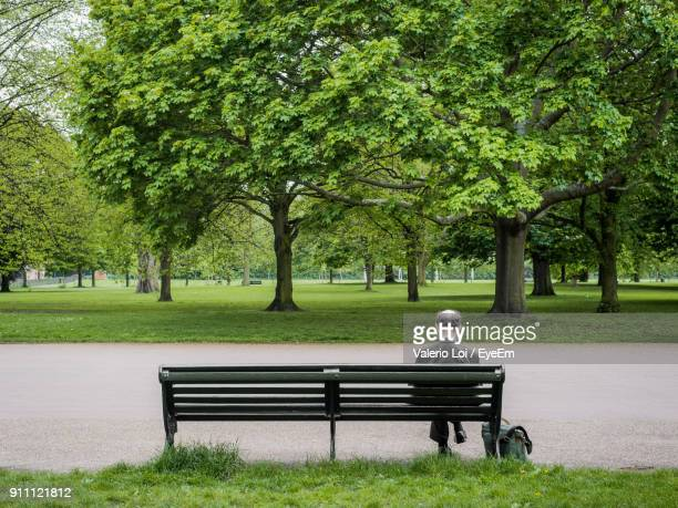Rear View Of Man Sitting On Bench At Park
