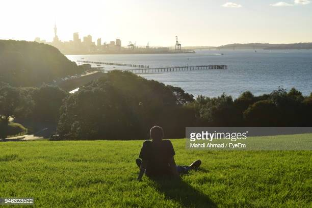 rear view of man sitting on grass at park - auckland stock pictures, royalty-free photos & images