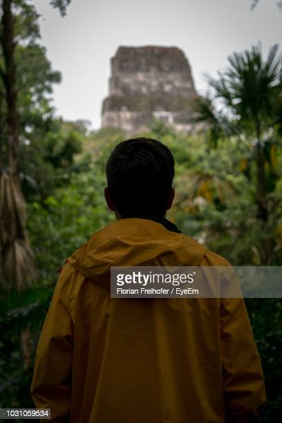 rear view of man standing against trees - mayan people stock photos and pictures