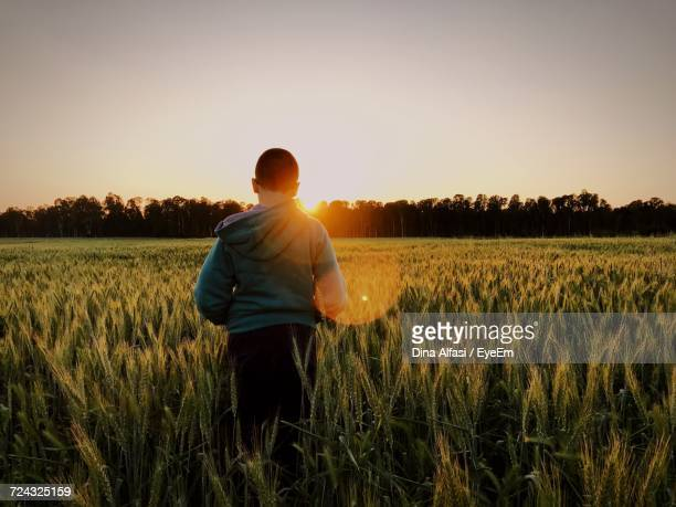 Rear View Of Man Standing Amidst Wheat Field Against Sky During Sunset