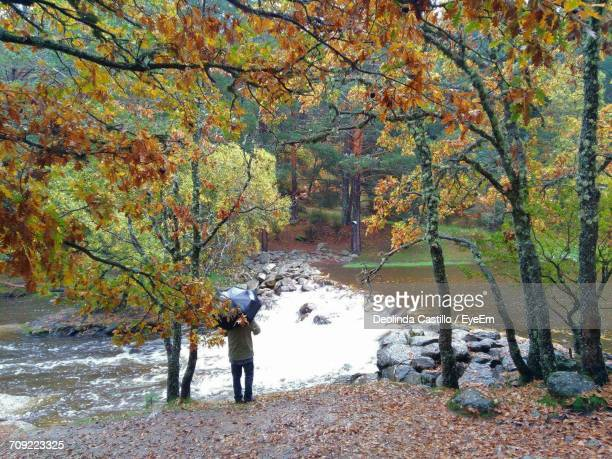 Rear View Of Man Standing By Autumn Trees At Riverbank