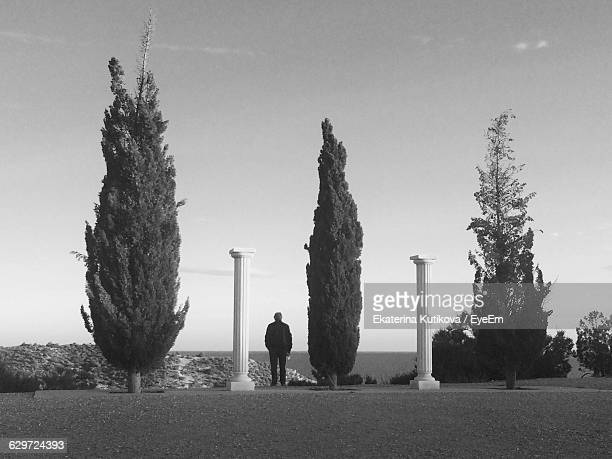 Rear View Of Man Standing By Column And Tree Against Sky