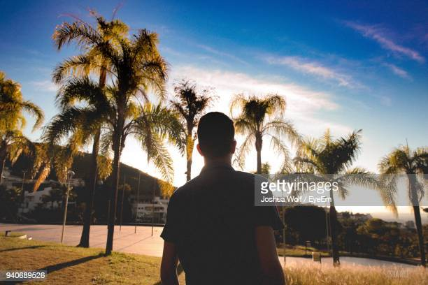 rear view of man standing by palm trees against sky during sunset - belo horizonte stock pictures, royalty-free photos & images