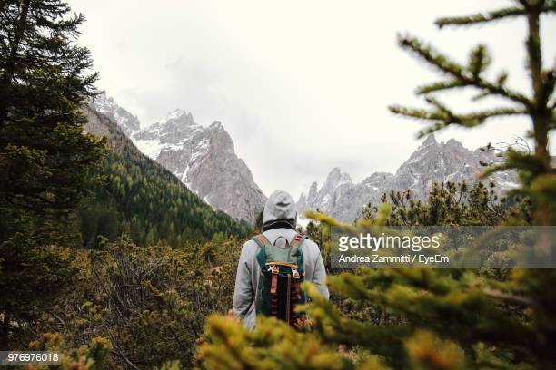 Rear View Of Man Standing In Forest Against Snowcapped Mountains